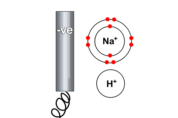 Rule one says hydrogen can only form on the cathode, sodium cant so all of its electrons are stripped and given to the hydrogen