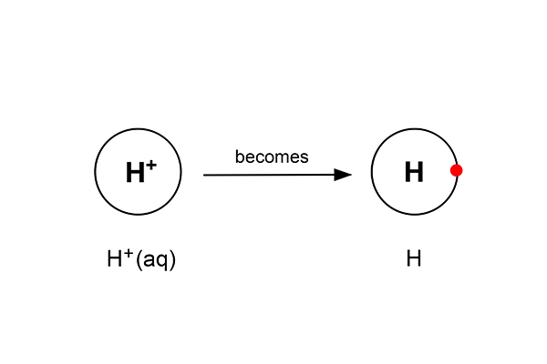 With the electron hydrogen ions become H
