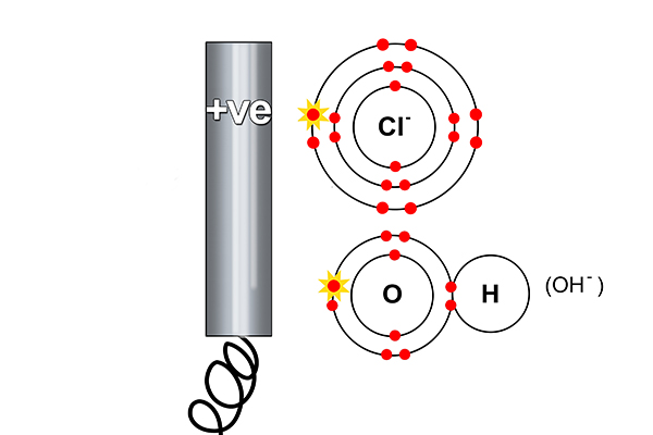 Electrons are stripped from the chlorine
