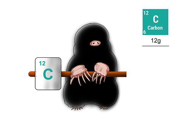 One mole of carbon weighs 12g this is also the amount of protons and neutrons in its molecular structure