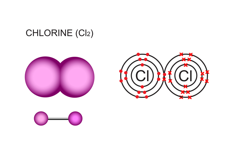 A molecule with 2 chlorine atoms is a diatomic molecule