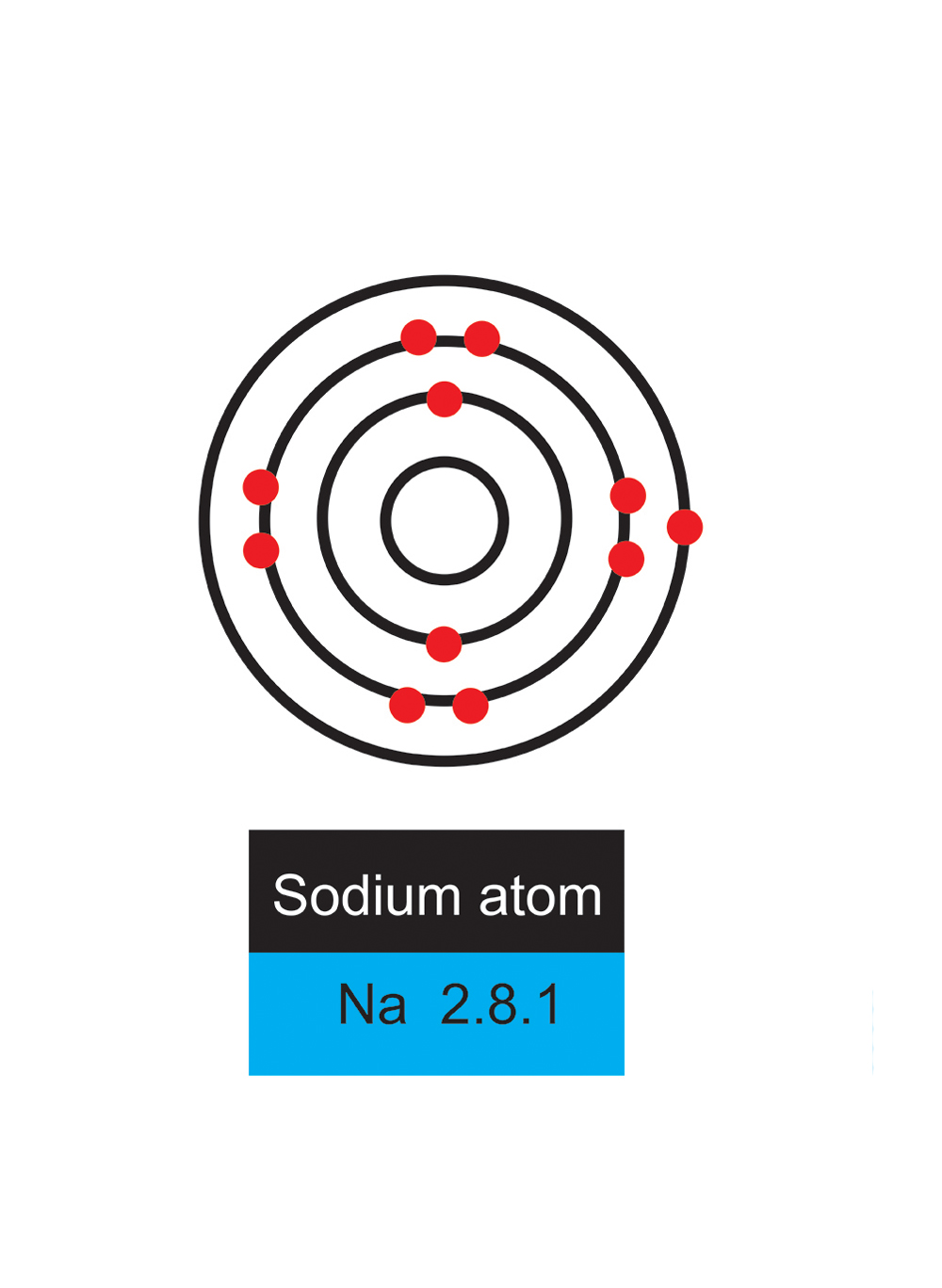 Atoms need all shells filling with the correct number if not it will react with other atoms to fill or release electrons sodium in this case wants to get rid of the single electron in its outer shell