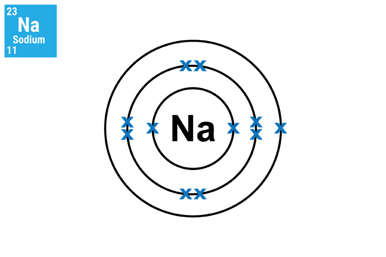 Sodium has 3 shells, the inner and middle shells are full and the outer contains one electron, it has a mass of 11