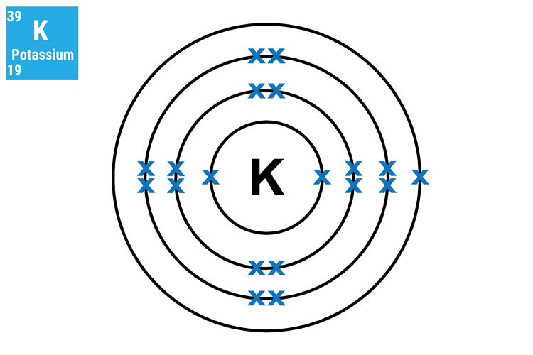 Potassium has 4 shells the inner, second and third shells are full and the outer contains 1 electron