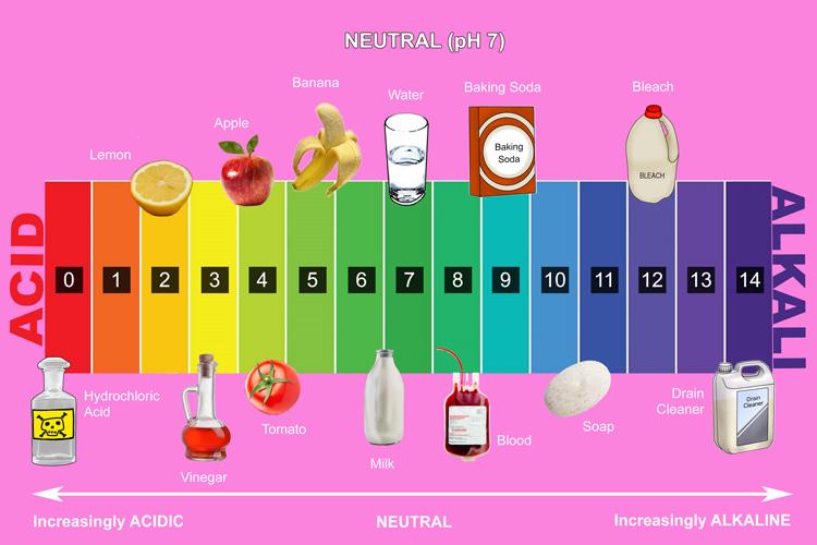 Yr10 acids and bases.