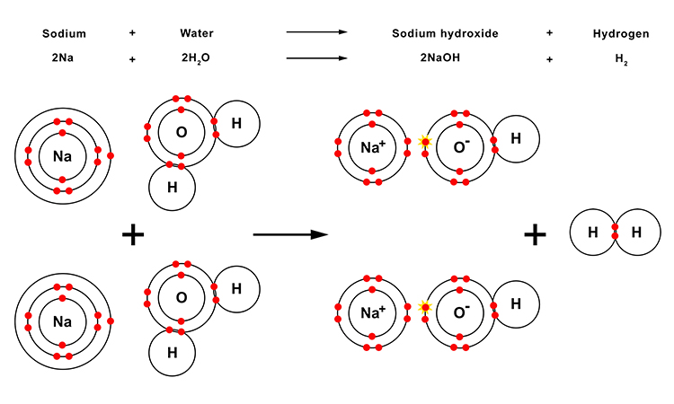 Diagram showing what happens to sodium molecules when introduced to water
