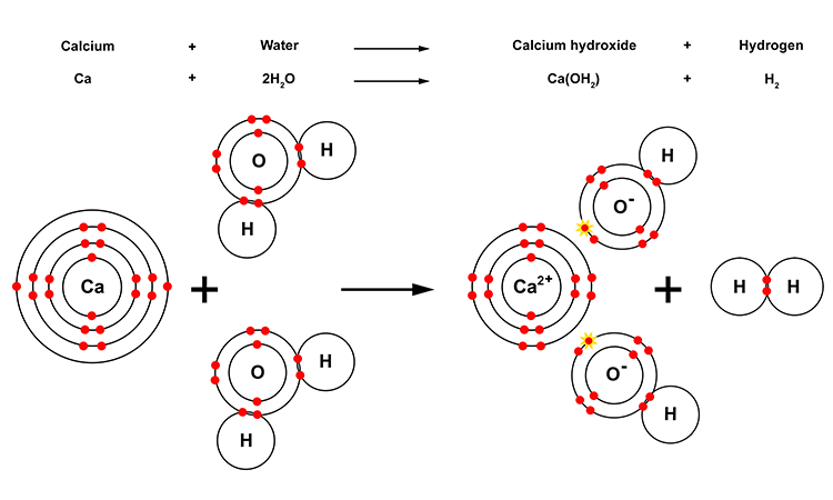 Calcium Is Denser Than Group 1 Metals So Sinks And Reacts