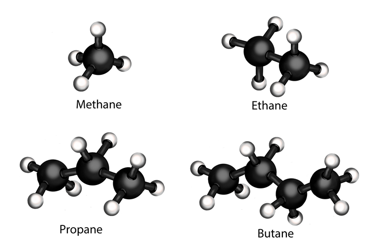 Hydrocarbons in crude oil are alkanes they have a single bond joining their atoms together these are Methane, Ethane, Propane, Butane