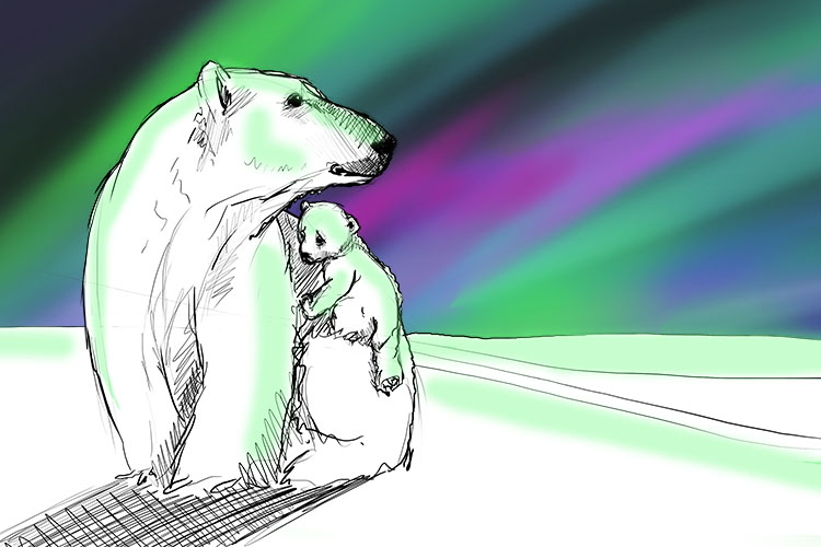 The first time she saw the aurora (also known as the Northern Lights), the baby polar bear was so frightened she clung tightly to her mum.