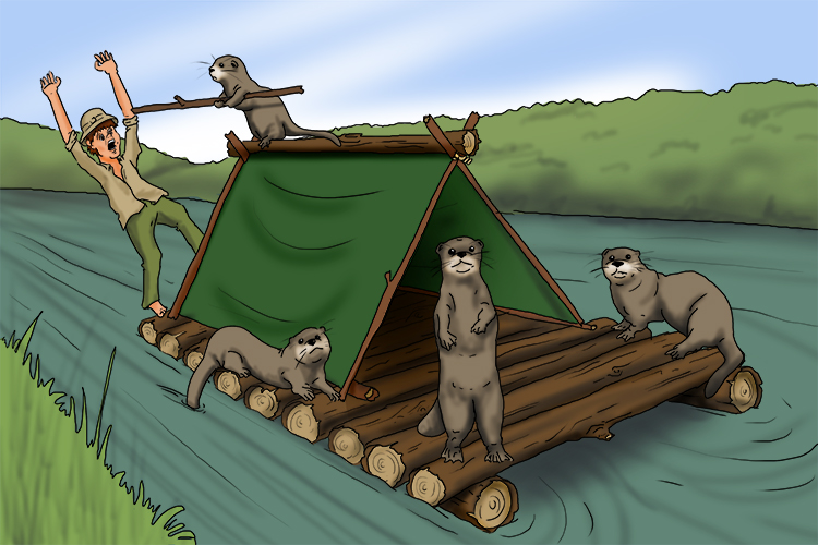 After hijacking his raft, the otters took it miles downriver to where they planned to make their new home.