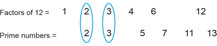 Only 2 and 3 are prime factors of 12