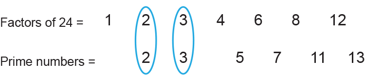 The prime factors of 24 is 2 and 3