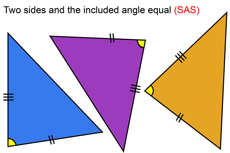 The SAS rule is if 2 triangles have the same length as 2 sides of the other and the angle between the 2 sides are the same on both then they will be congruent