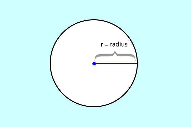 The radius is the straight line that extends out from the centre of a circle to the edges