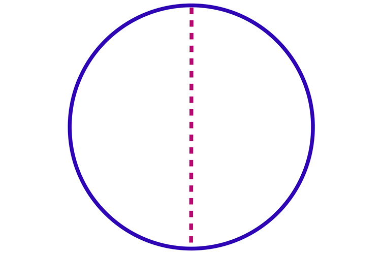 Any line that runs through a circle exactly half way is symmetrical to the other side
