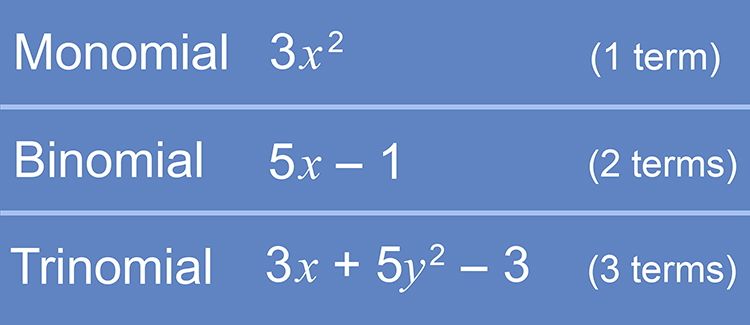 Binomial is the word given to 2 terms in an equation