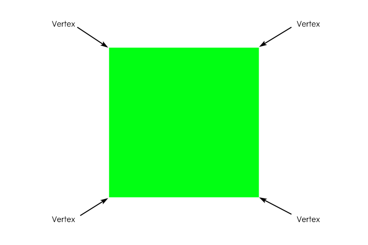 A square has 4 vertices