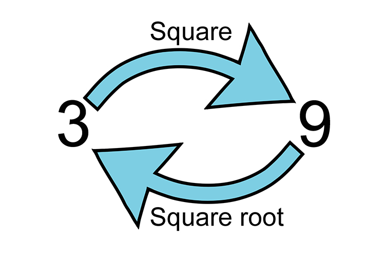 3 squared is 9 but 3 is the square root
