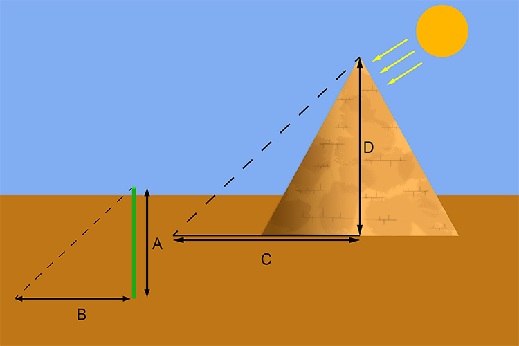 Thales found it could work at any time of day so he started to use poles he would measure the height and shadow of the pole also measuring the length of the shadow of the pyramid realising the intercept ratio