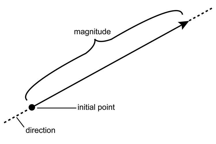 A vector showing a direction and magnitude from an initial point