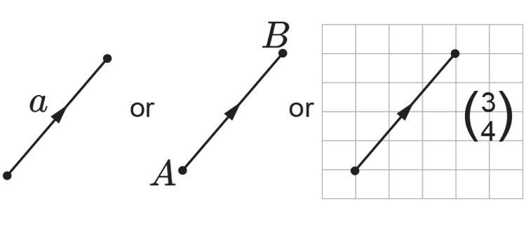 The values of a vector can be represented in 3 different ways