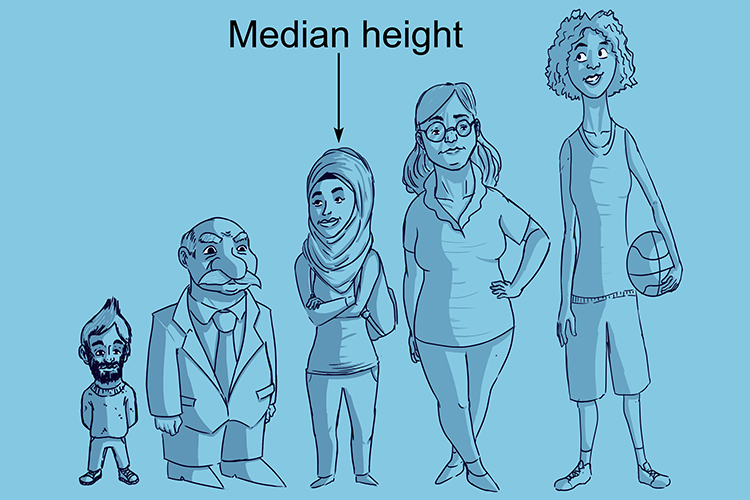 The median in this example is the middle height