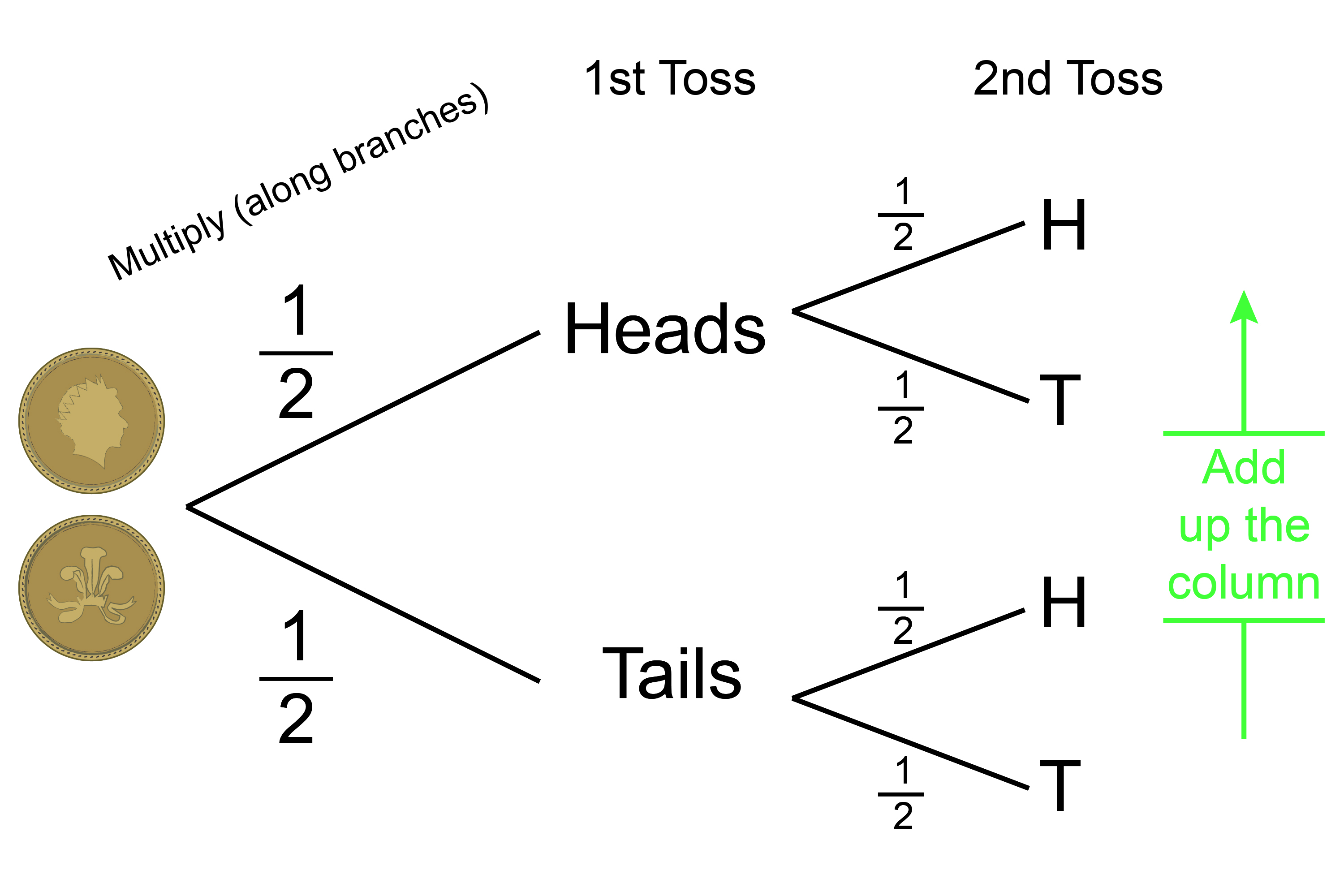 Probability tree of tossing a coin