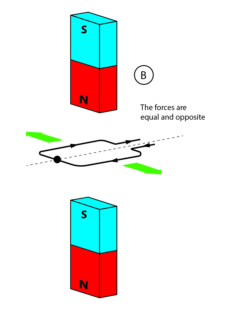 Equal and opposite forces on a coil between two magnets