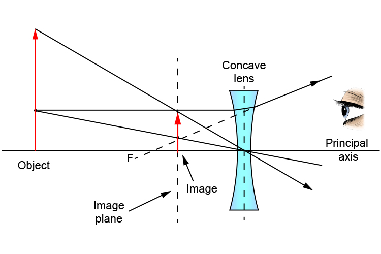 Ray diagram showing the point of focus when an object is bigger than the concave lens