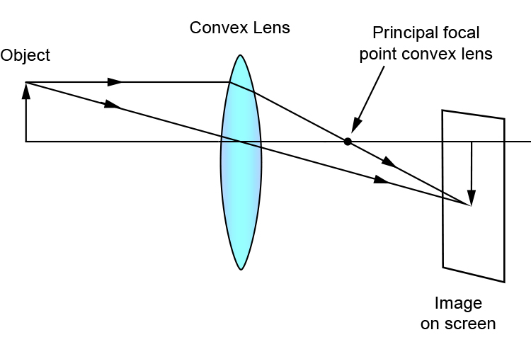 Ray diagram showing the principal focal point and image on a screen with just a convex lens