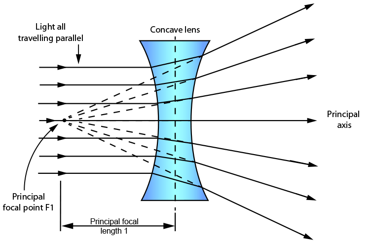 Parallel light rays enter a concave lens and diverge as they exit it