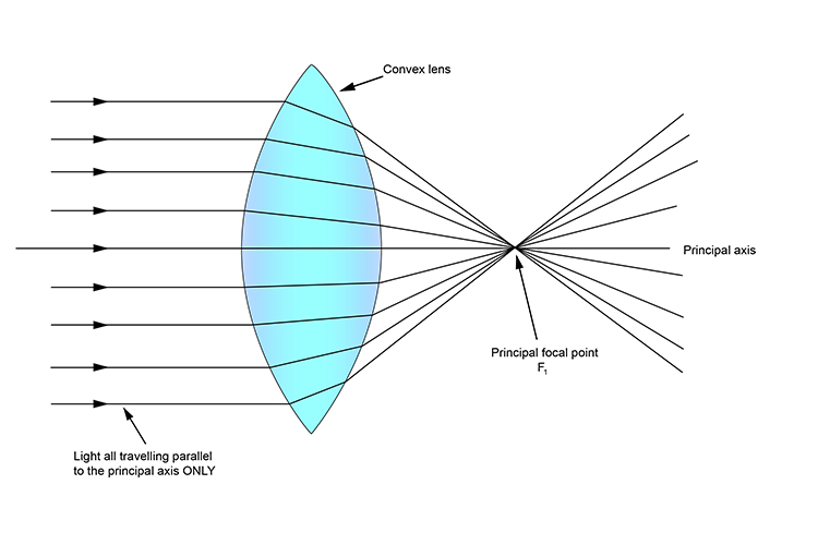 Parallel light rays focused at the principal focal point by a convex lens