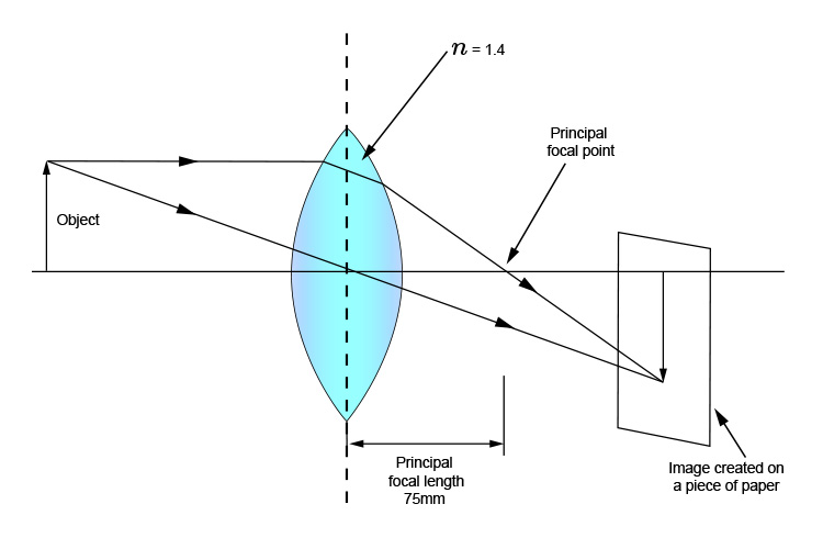 Ray diagram of a convex lens with a refractive index of 1.4