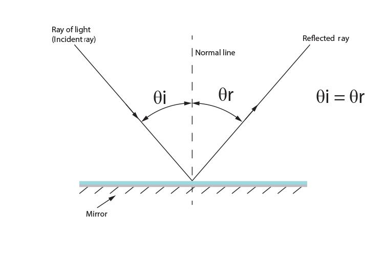 The angle of incidence equals the angle of reflection when a ray hits a flat mirror.