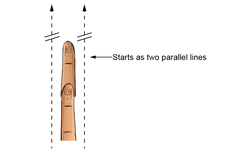 Parallax starts with two parallel lines