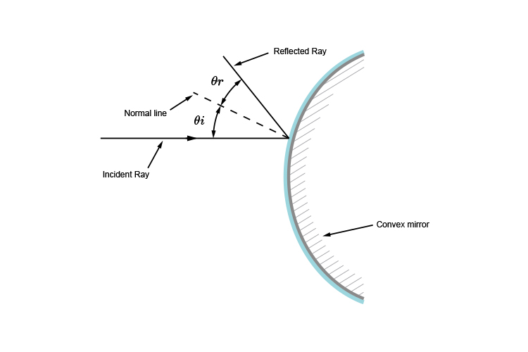 Ray diagram showing when a ray reflects off a convex surface the angle between the incident and normal is equal the the angle between the reflected and normal.