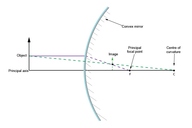 Convex mirror ray diagram from the middle of the object