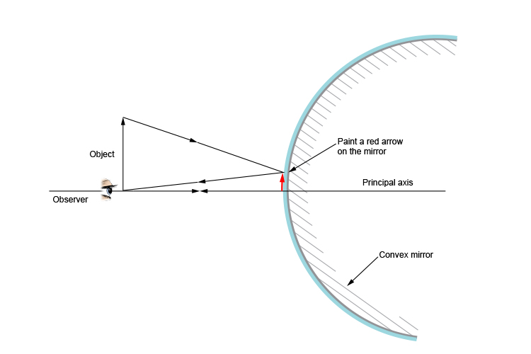 Ray diagram showing the painted image an observer can see in a convex mirror