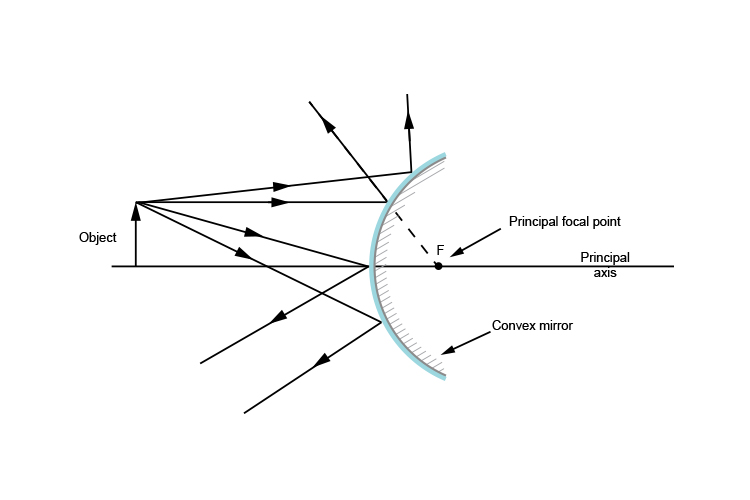Ray diagram showing the principal focal point of a convex mirror