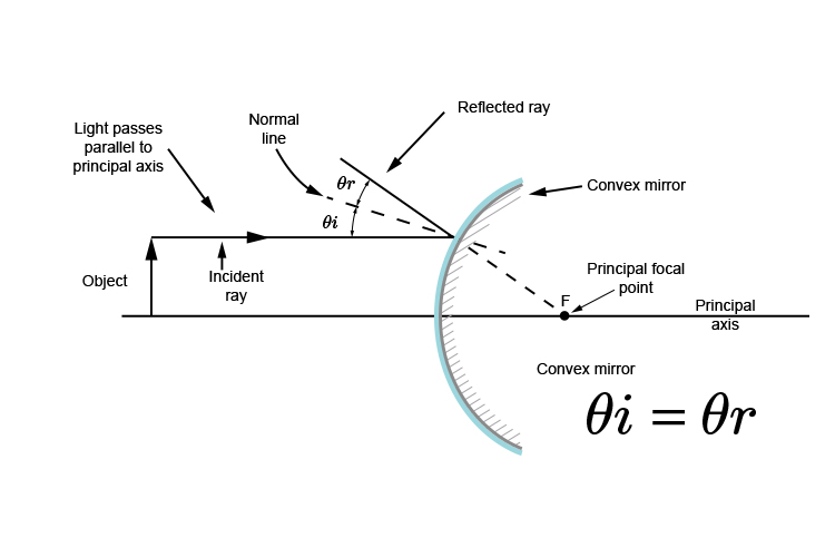 Ray diagram showing the incident ray has to be parallel to the principal axis