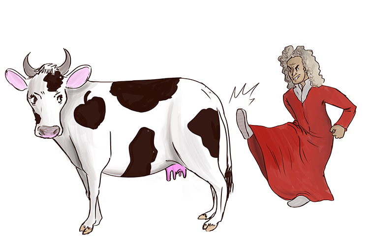 Sir Isaac Newton kicks a cow.