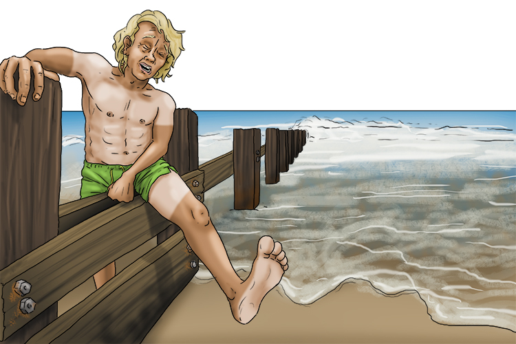 His groin (groyne) was in agony. He had slipped and hurt himself on the wooden barriers at the beach.
