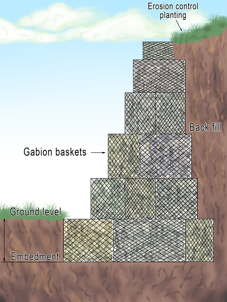 Typical gabion wall diagram in coastal landscapes geography.