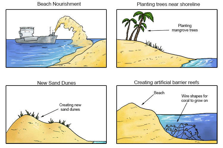 Use of the natural environment of a coastline for schemes that work with the sea's natural processes