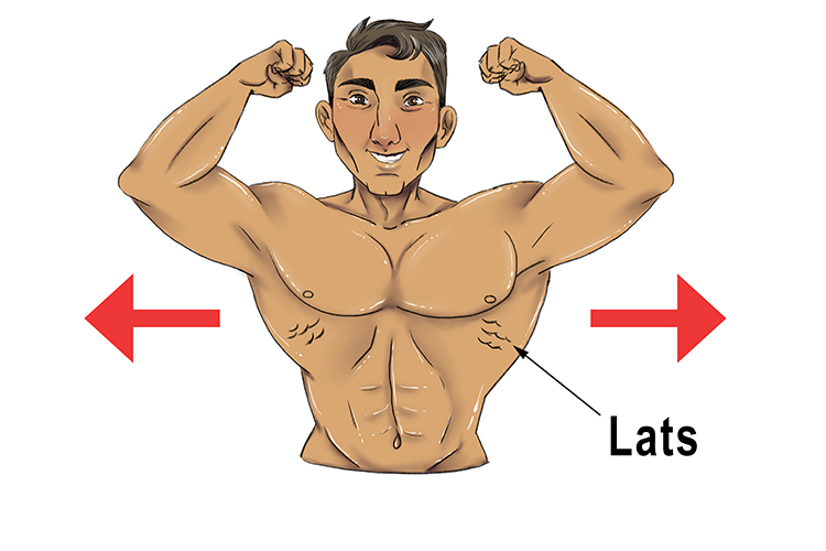 Remember, if you are a body builder your lats come out sideways on your back. This helps remind you that lateral is the sideways movement.