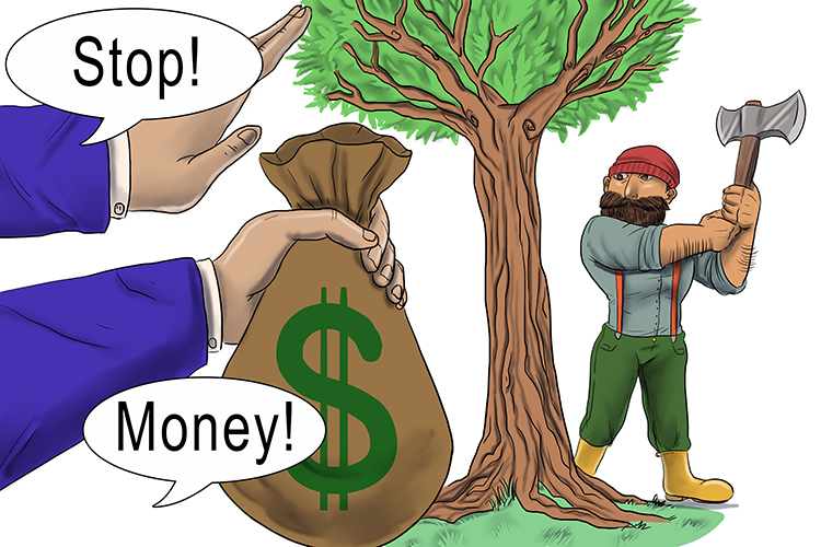 Your debt is reduced (debt reduction) if you stop reducing your trees (protect rainforests).