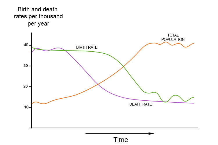 This reminds you that a demographic transition model is a graph showing the birth rate, death rate and population size over time, as below:
