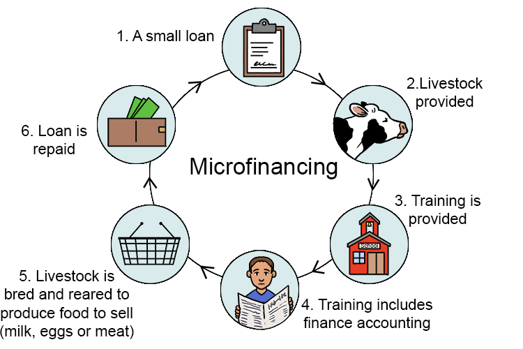 Very small loans which are given to people in low income countries (LICs) to help them start a small business