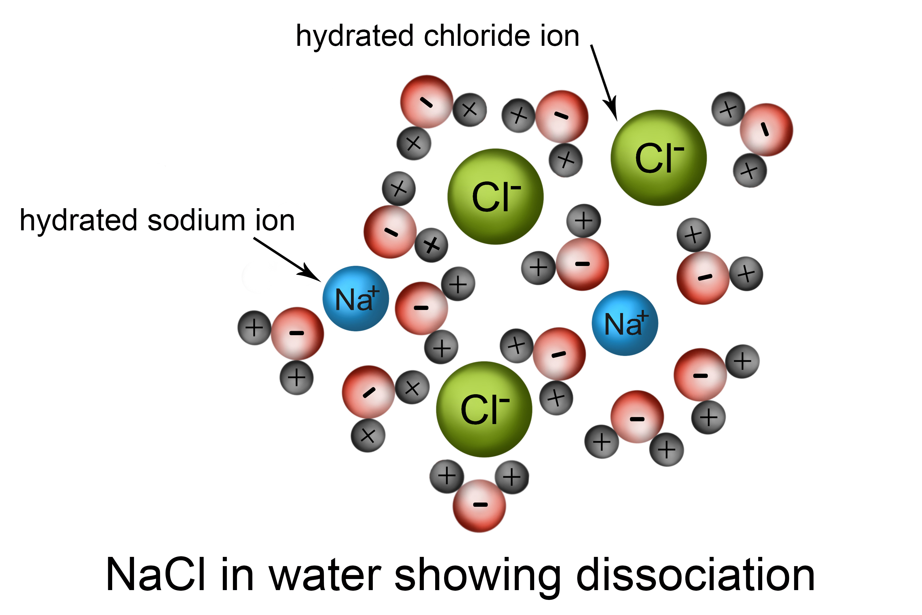 Particle structure of NaCI in water showing dissociation