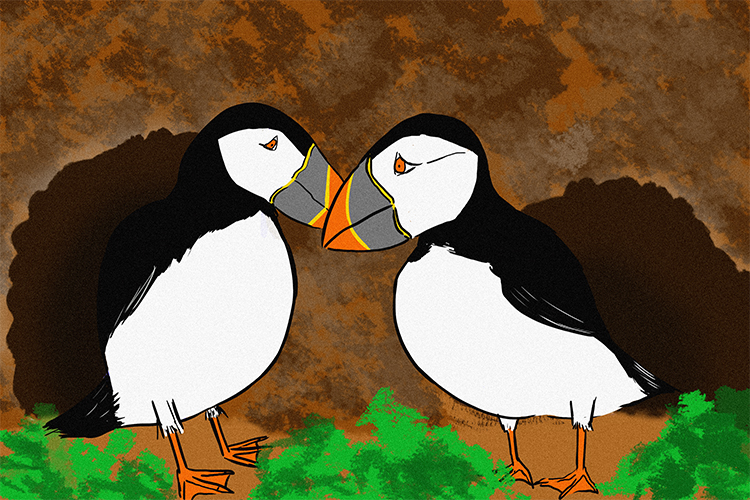 Atlantic puffins nest in rabbit burrows where the rabbit is unaffected because it doesn't use the burrow the puffin can benefit by the safe haven